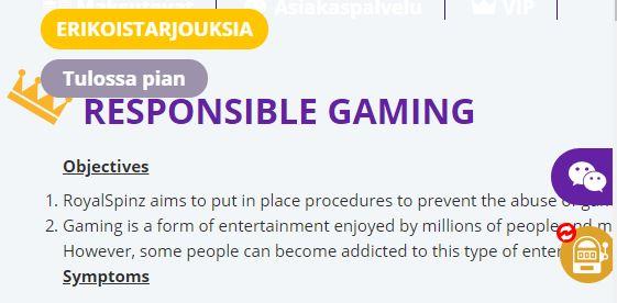 Vastuullista pelaamista